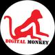 Digital Monkey Pvt Ltd Job Openings