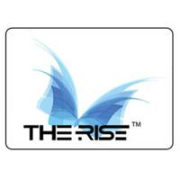 The Rise Creative Solutions Pvt Ltd Job Openings