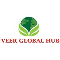 Veer Global Hub Job Openings